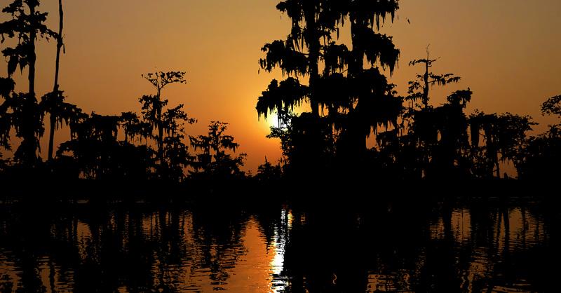 south bayou
