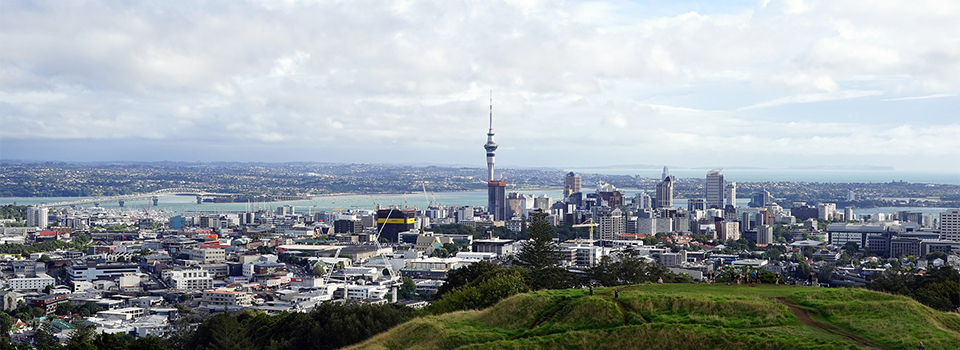 New Zealand businesses, lawyers renew attacks on 'chilling effect' of criminal-cartel offenses
