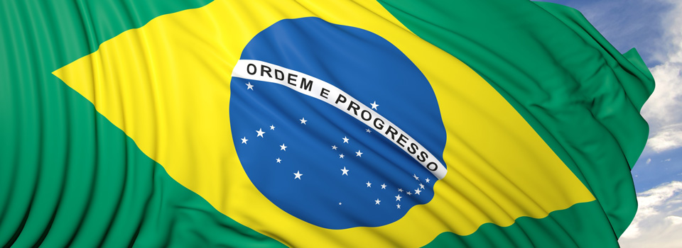 Brazilian data protection authority should have directors with different profiles, senior official says