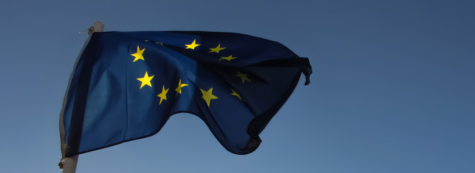 EU flag in the wind
