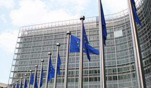 EU Flags in Wind